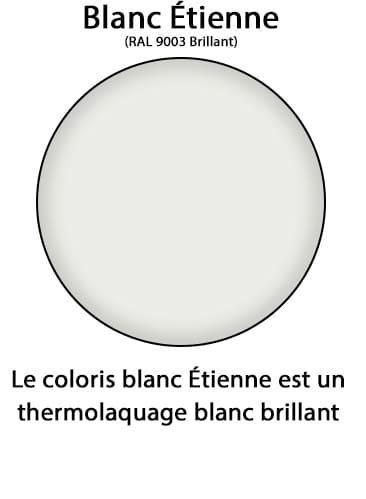 couleur blanc etienne