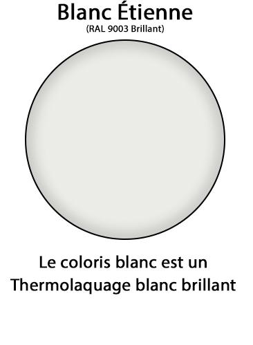 Blanc%209003%20Brillant_1.jpg