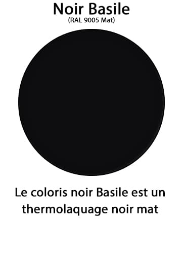 couleur noir basile